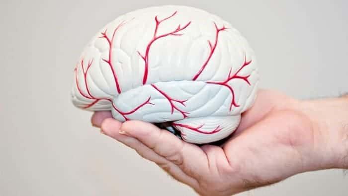 علائم و نشانههای سکته مغزی